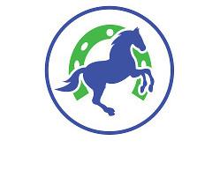 City AM Horse Alpha
